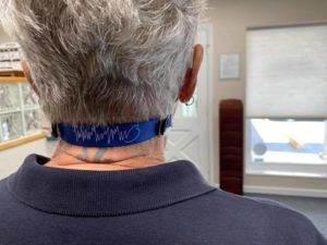 hearing aid savers